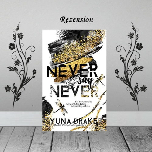 Never say Never - Ein Blick in meine Seele ⭐